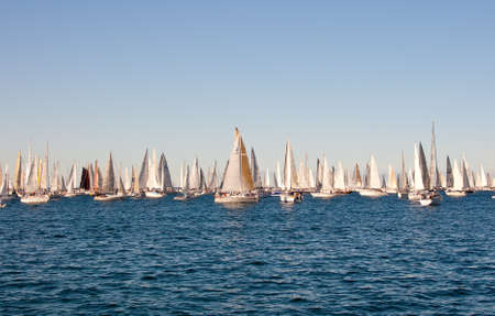 Trieste Barcolana,  2009 - The Trieste regatta  - Italy - http://www.barcolana.it/ Stock Photo - 13916793