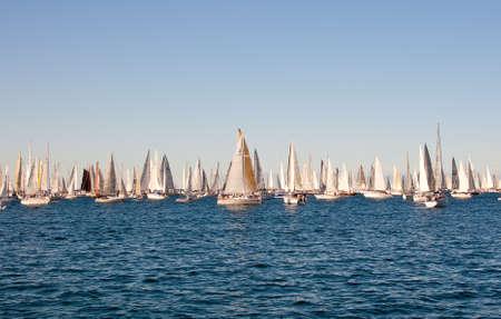 Trieste Barcolana,  2009 - The Trieste regatta  - Italy - http://www.barcolana.it/ Stock Photo - 13916793