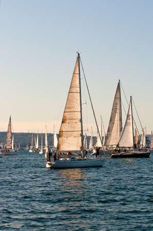 barcolana:  Trieste Barcolana,  2009 - The Trieste regatta  - Italy - http:www.barcolana.it