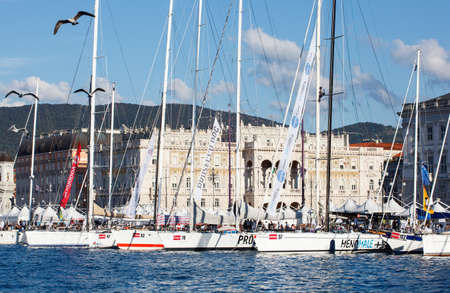 barcolana: TRIESTE, ITALY - 11 OCTOBER 2012: Sailboats in the pier after the 45 Barcolana regatta on October 11, 2013
