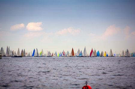 barcolana: View of the 46 Barcolana regatta in Trieste sea