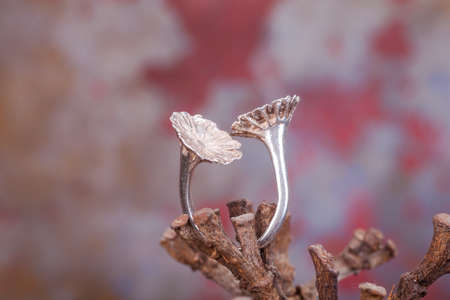 silver ring: Close up of silver ring, manufactured by Ornella Salamone Stock Photo