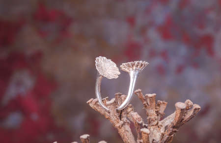 silver ring: Close up of silver ring, manufactured by Ornella Salamone Editorial