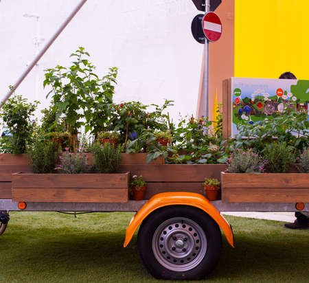 the world expo: MILAN, ITALY - MAY, 20: Plants on cart exposed at Expo, universal exposition on the theme Feeding the planet, Energy for life on May 20, 2015 in Mila