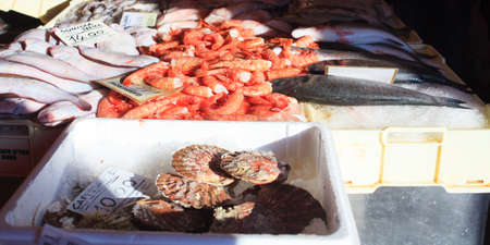 fish market: View of fish market in Chioggia, Italy