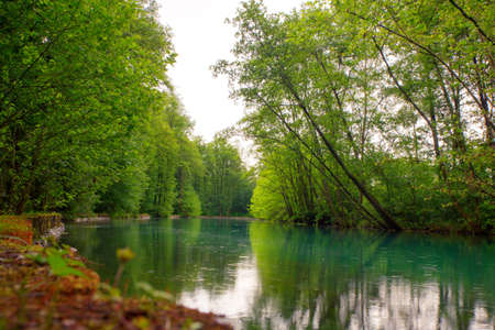 pal: View of the river in the site of Palù di Livenza, Pordenone. Italy