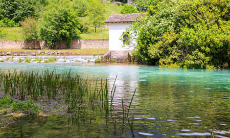 resurgence: View of the river in the site of Pal� di Livenza, Pordenone. Italy