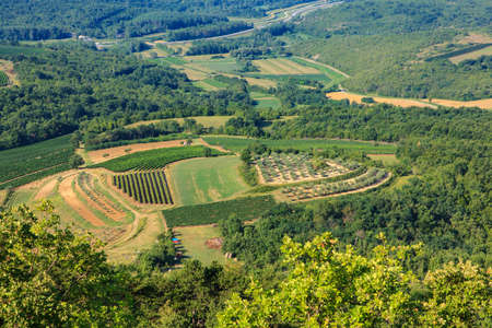 Top view of cultivated field in the Istrian countryside Stock Photo