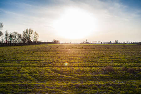 Field in the Po Valley at sunset Banco de Imagens