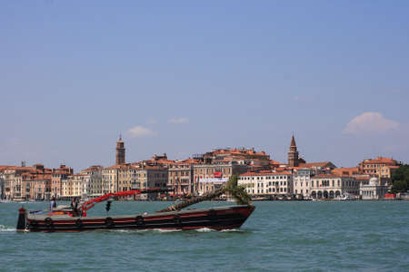 VENICE, ITALY - JUNE, 07:  Boat transporting palm tree on Canal Grande on June 07, 2009 Stock Photo