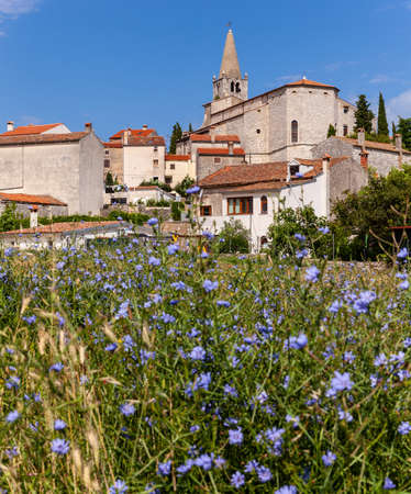 View of  church of Visitation of Blessed Virgin Mary to St. Elizabeth in Valle- Bale little town in Istria. Croatia