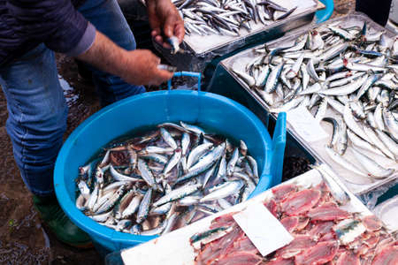 Salesman cleaning the sardines using a big bucket filled of water at the Catania street fish market 2019