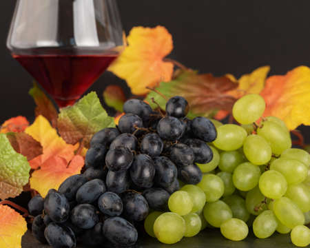 Two kinds of grapes: green and red with autumn yellow leaves and a glass of wine.
