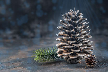 Christmas Decoration greeting card- Snowy Pine Cones On Fir Branch With Christmas Lights.