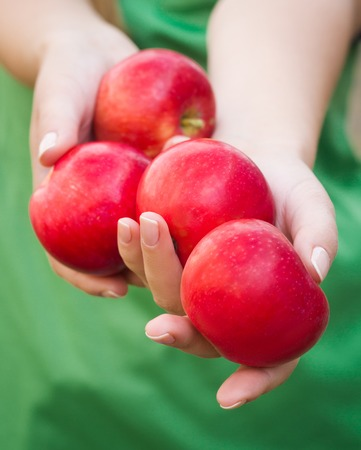handful: Handful of apples. Woman holding apple in her hands Stock Photo