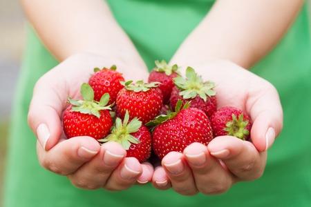Handful of strawberries. Woman holding sweet strawberries in her hands