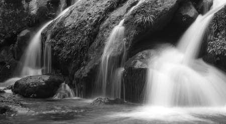 rivulet: Streams