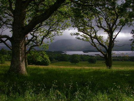 A landscape 5 km northwest of Killarney, in County Kerry, Ireland.