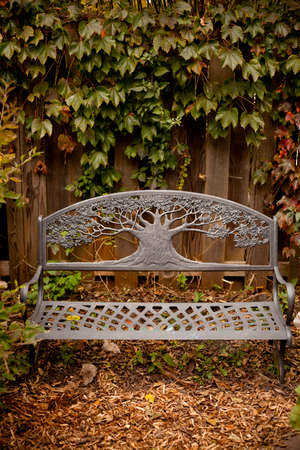 Decorative iron park bench in garden  with autumn leaves and wooden fence photo