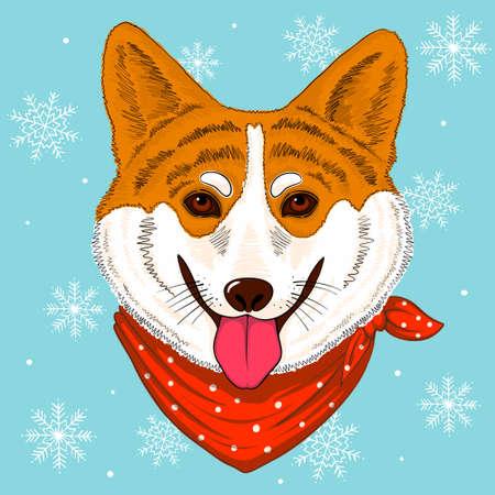 Hand drawn vector corgy dog wearing bandana