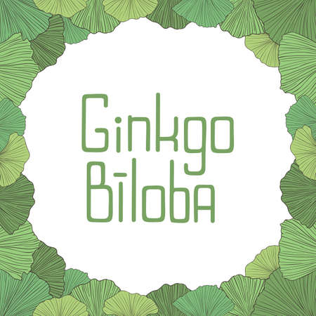 Hand drawn vector frame of green ginkgo leaves