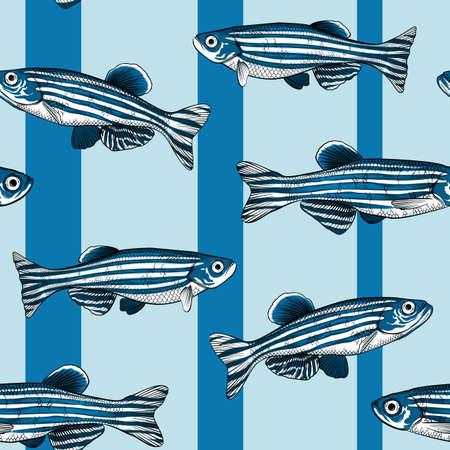 Hand drawn vector danio rerio fish seamless pattern
