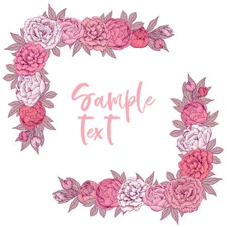 Peony flowers frame design
