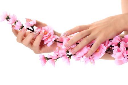 Female hands holding sprig of apple blossom.