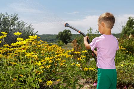 少年の両親に役立ちます。彼は庭の花に水をまきます。 写真素材 - 43681314