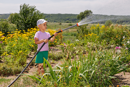 Boy helps parents. He is watering  flowers in  garden. Stok Fotoğraf