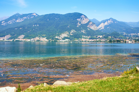 Dirty water with algae on lake Como in Italy