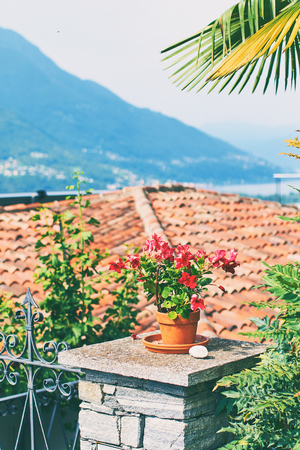 Beautiful red potted flower, tile roof and other details in rural alpine Ticino Canton in Southern Switzerland with houses, farms, vineyards and Lake Maggiore