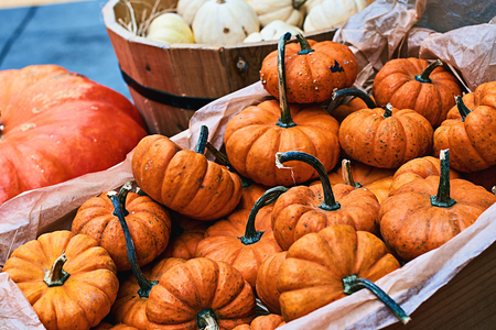 Small halloween orange pumpkins and other vegerables in a street store
