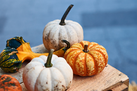 Small halloween pumpkins in orange and white colors on a wooden crate