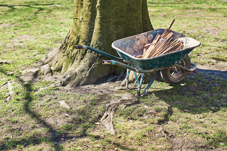 Wheelbarrow with gardening tools under the tree on a sunny spring day Stok Fotoğraf