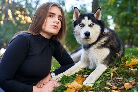 Young beautiful girl playing with her cute husky dog pet in autumn park covered with red and yellow fallen leaves Stok Fotoğraf