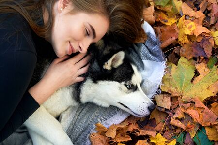Young beautiful girl playing with her cute husky dog pet in autumn park covered with red and yellow fallen leaves Stok Fotoğraf - 131771279
