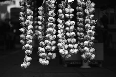 Bunches of garlic bulbs hanging on the local market in black and white