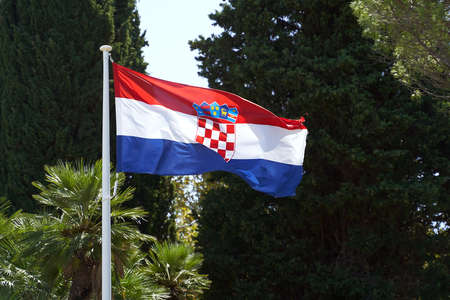Waving flag of Croatia on summer trees background 免版税图像
