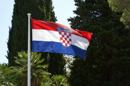 Waving flag of Croatia on summer trees background 免版税图像