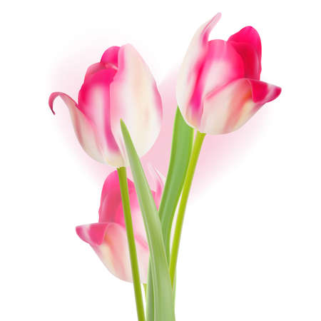 Valentine s day template tulips design Vector