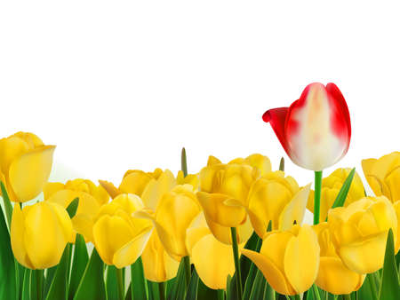 Yellow tulips and one red  EPS 8 Stock Vector - 20165641