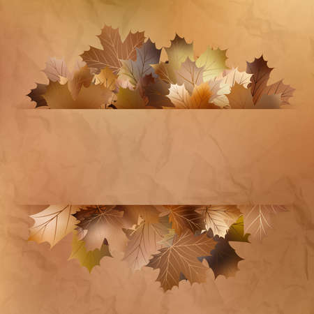 Colorful autumn leaves on a old paper. And also includes EPS 10 vector photo