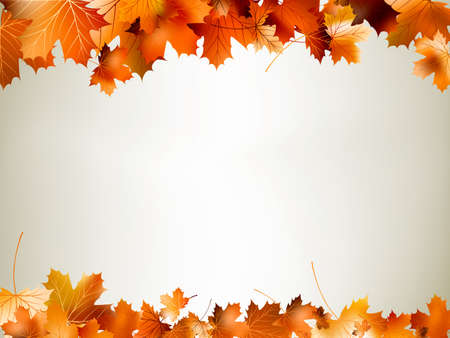 autumn leaves falling: Colorful autumn leaves falling and spinning. And also includes EPS 10 vector