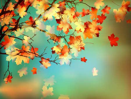 Szczęśliwa karta Dziękczynienia, piękne liści klonu. A także EPS 10 wektor