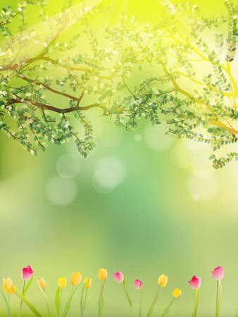 Tulip colorful flowers garden in spring background. And also includes EPS 10 vector