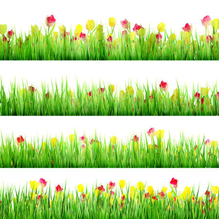daisyflower: Grass And Flower Set, Isolated On White Background. And also includes EPS 10 vector