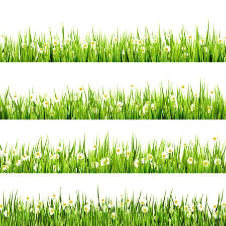 Gras und Blumen-Grenze art Design. Und der auch EPS 10 Vektor Standard-Bild - 28070431