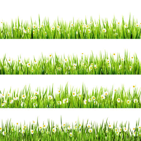 grass: Grass and Flowers border art Design. And also includes EPS 10 vector