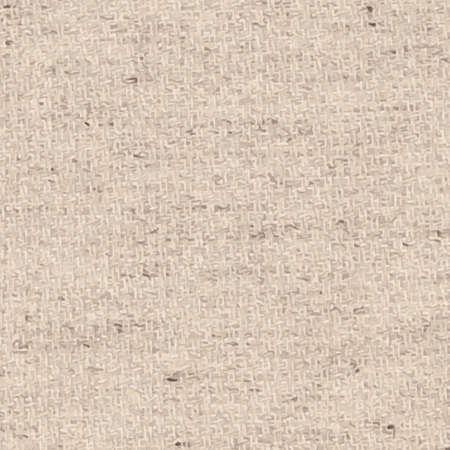 light brown: Light brown canvas texture.  Illustration